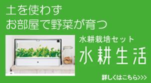 石川県金沢市ダスキン諸江町支店・水耕生活