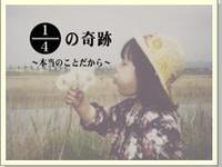 1/4の奇跡 入江富美子さん