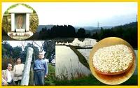 光明自然農法玄米 から繋がる未来(美来)♪