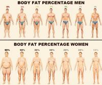 なかなか下がらない体脂肪率(ダイエットVol.181)