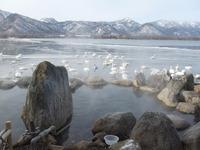 北海道の温泉(16) コタン温泉「コタン温泉露天風呂」