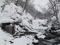 北海道の温泉(20) 然別峡温泉「鹿の湯」