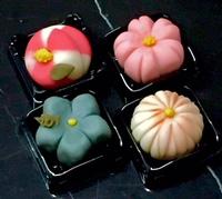 上生菓子 おもたせ