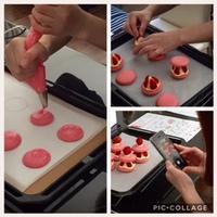 Lesson / Macarons aux fraises